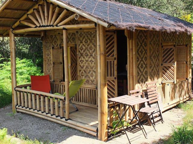 Cabane en bambou en Cévennes méridionales