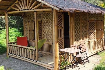 Cabane en bambou en Cévennes méridionales - Soudorgues