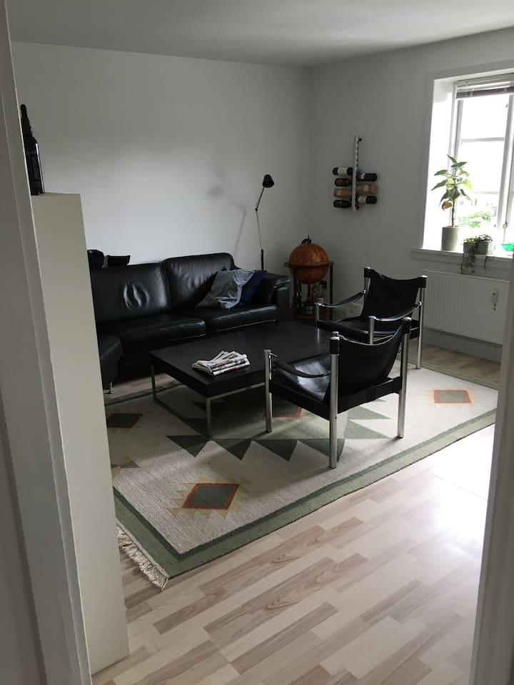 Nice and cozy apartment, Center of Esbjerg
