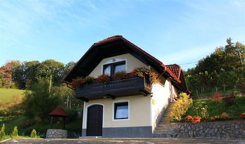 Vineyard cottage Krivic
