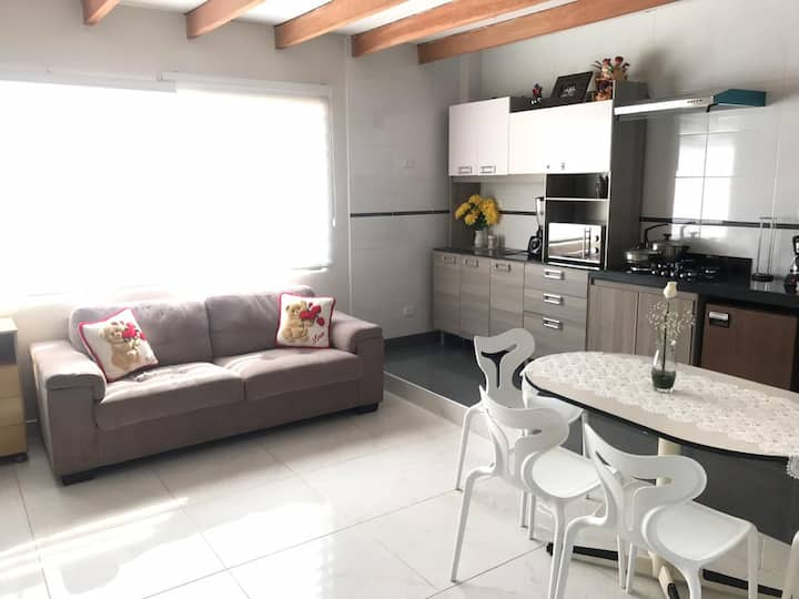 Loft/studio apartment-San Isidro FinancialCenter