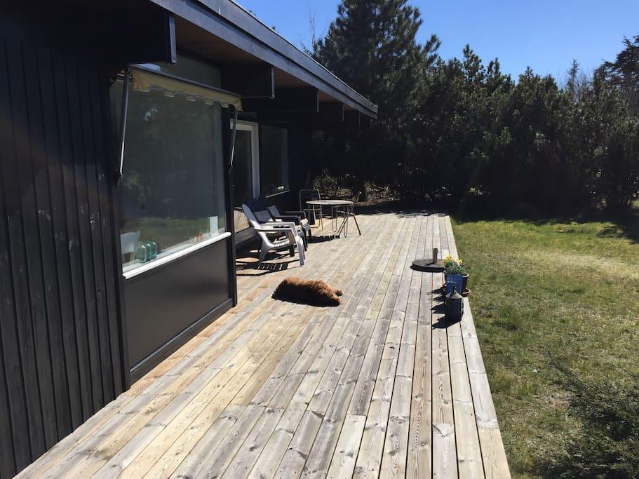 Kæmpe sydvendt terrasse
