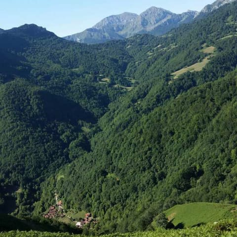 Naturaleza en una aldea pintoresca - Viboli - Rumah
