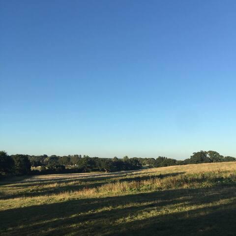 Stunning Sussex Views @ Shepherd's - Twineham - Dom