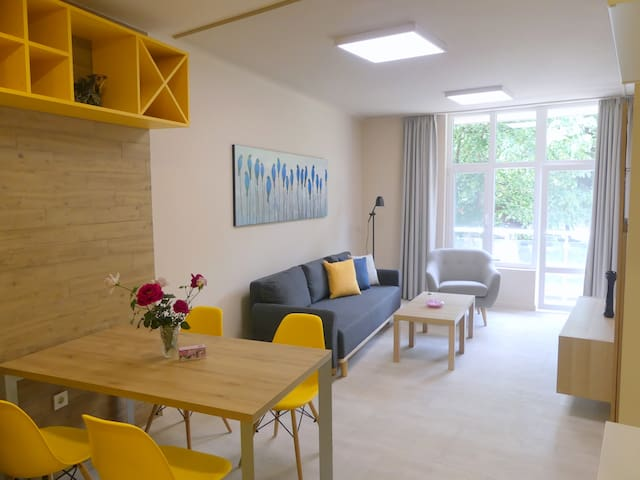 Elegant apartment with a park view in the center