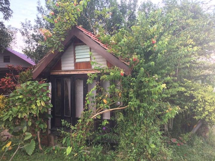 Tiny House Of Beranda Tok Nabjit