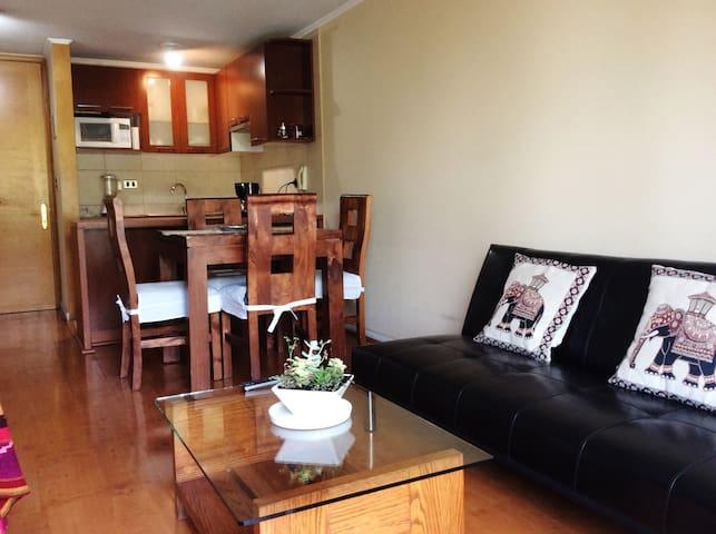 Cozy Apartment in Providencia near Subway - Providencia - Appartamento