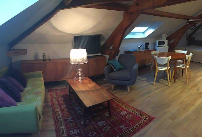Loft 45 m 1-4 p, proche La Villette, Paris, Roissy