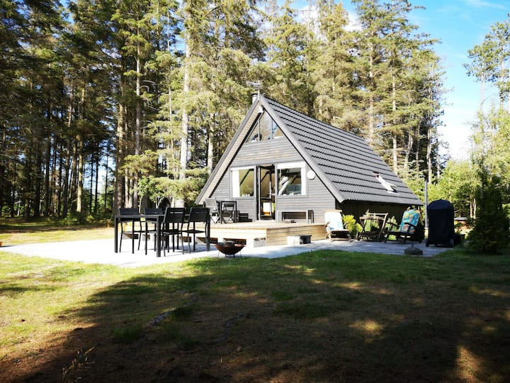 Idyllisk skov-sommerhus kun 22 km fra skagen