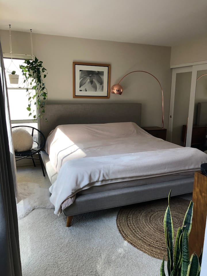 Serene 1 Bedroom Condo In San Mateo