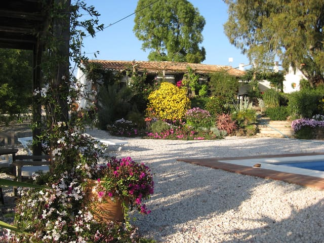 Finca Anna, The Annexe ( Reg No: VTAR/MA/01319) - Vinuela - Other