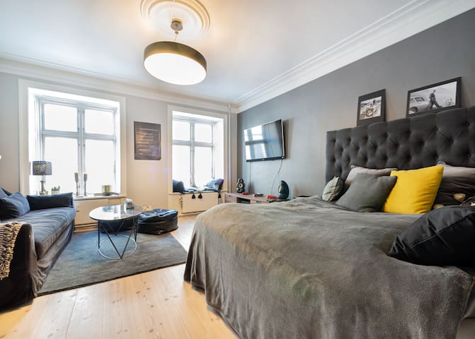 Newly renovated apartment in Nyhavn with balcony.