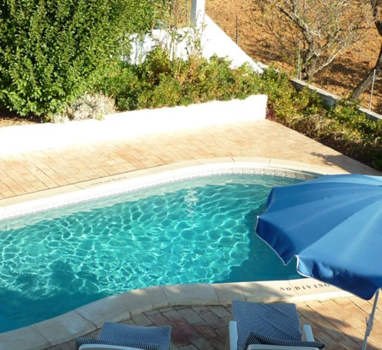 View of the private pool and garden from roof terrace