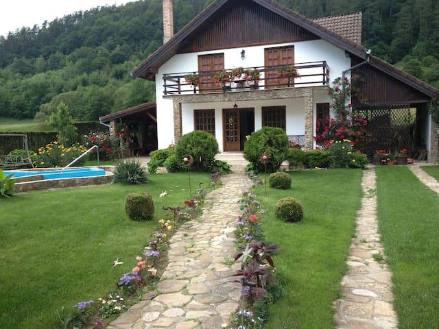 Cozy place near Dacian Fortresses - Costești - Dům