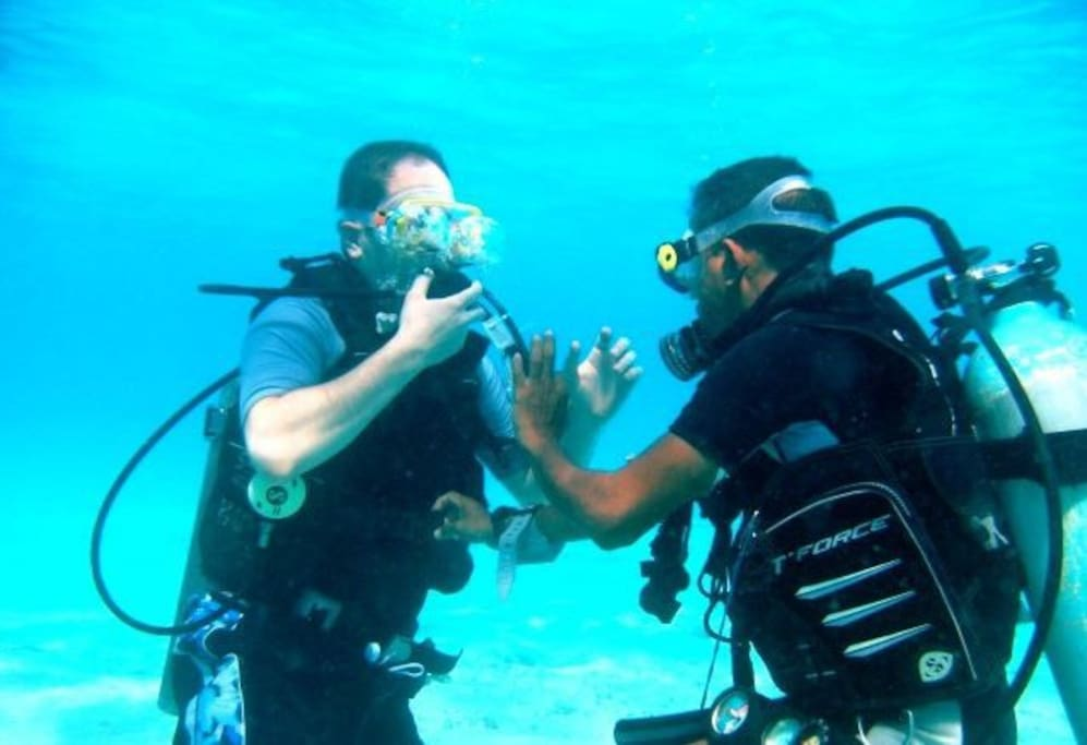 Learn and discover SCUBA diving