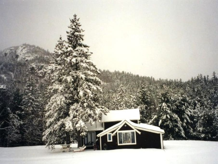 AuSable Camp in Winter