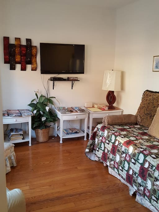 Comfortable living room area can be used to relax and can double up as an extra bed to accommodate more guests.