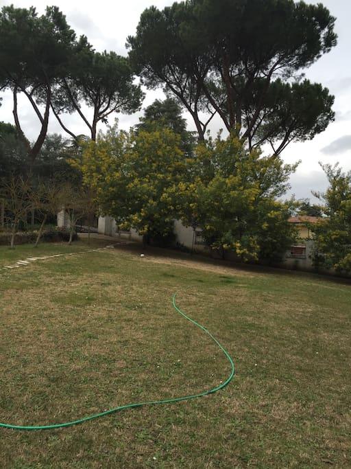 giardino anteriore