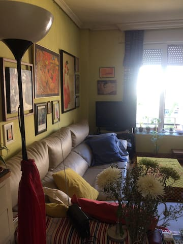 Vista parcial del salón, con ventanas exteriores.