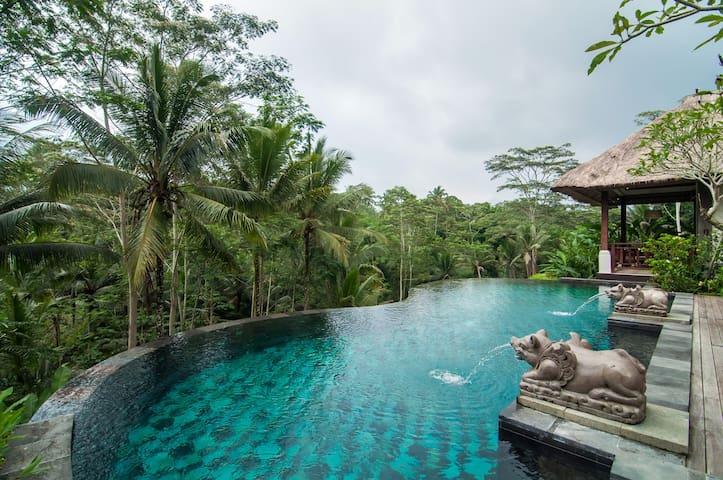 Villa Amrita Ubud Bali One Bedroom  - Tegallalang - Villa
