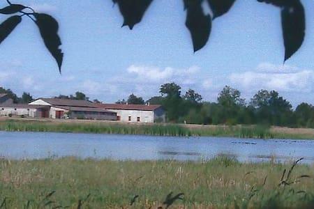 Grande maison de plain pied - Villars-les-Dombes
