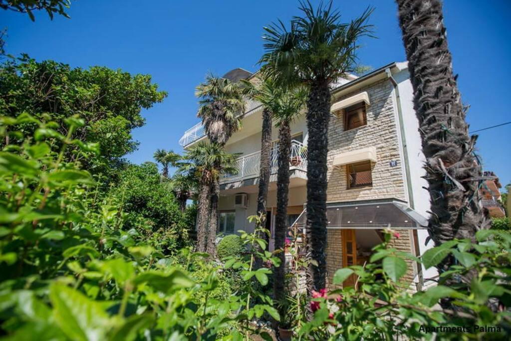 Apartments Palma Loncar