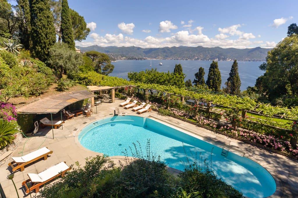 Pool Over Portofino