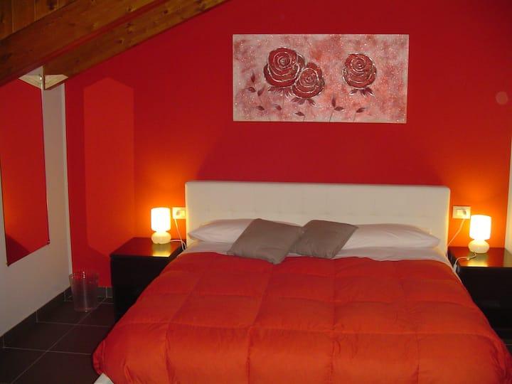 Rosa Rossa . i fiori di Malpensa