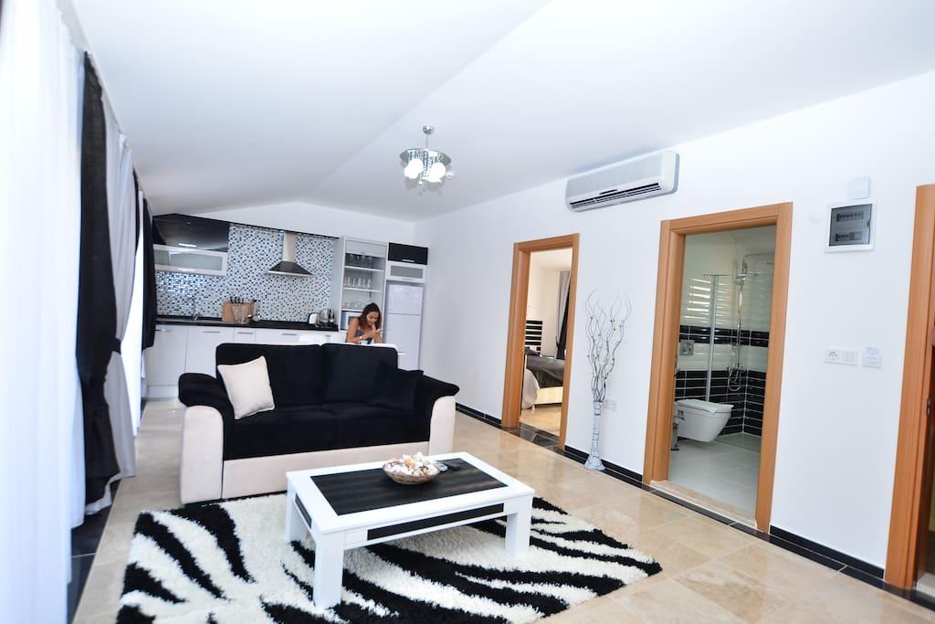 Люкс апартаменты с одной спальней. Зал и кухня американского типа.