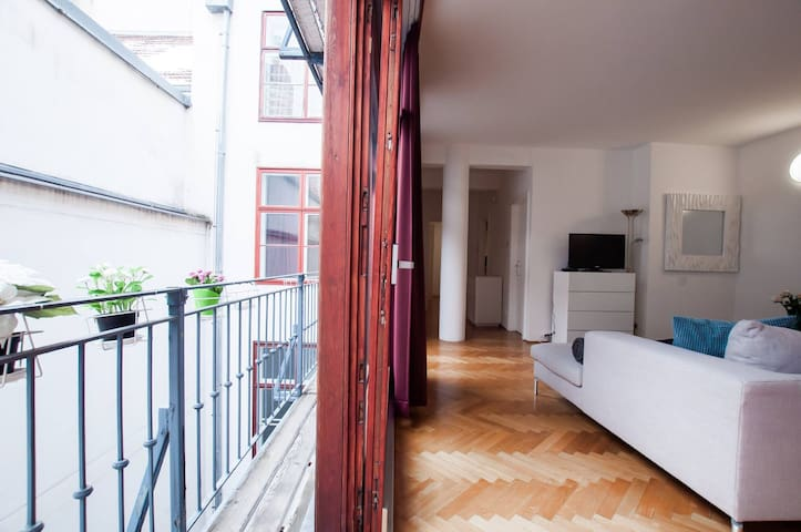 Apartment in the heart of Vienna (Sing 18, Top 9)