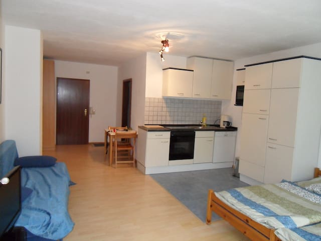 Holiday Flat in Frankenthal/Pfalz - Frankenthal - Appartement
