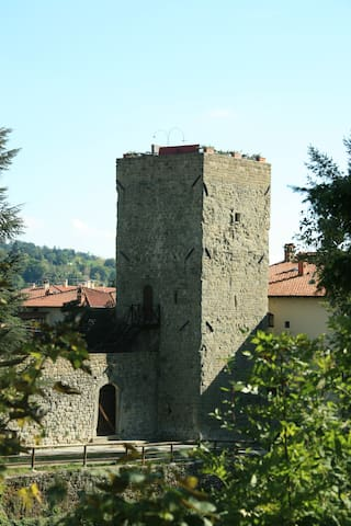 MEDIEVAL CASTLE LUNGARNO exclusive SPA In the roof - Pratovecchio - Villa
