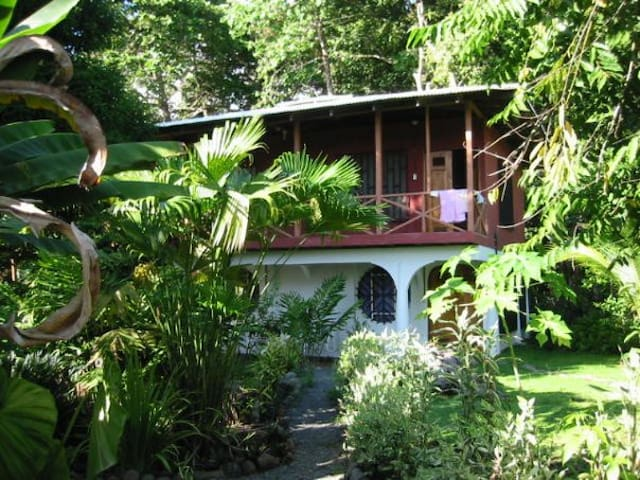 Carols Cabinas surf and jungle