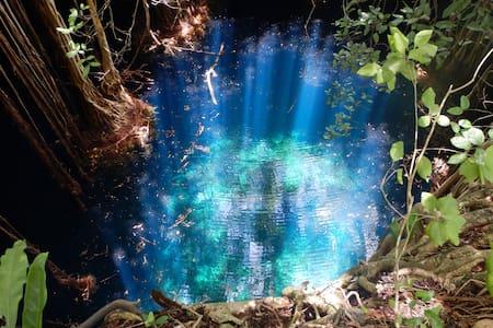 Camping en el bosque tropical, cenote, ruinas - Molas