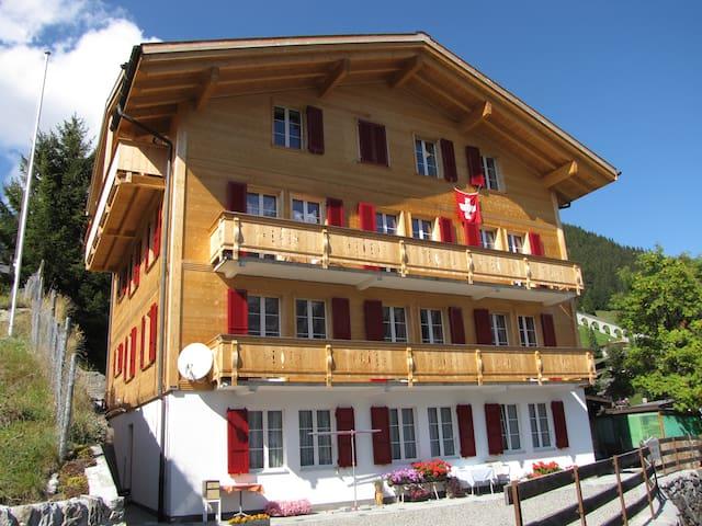 Chalet Schönbühl, amazing spot in Mürren