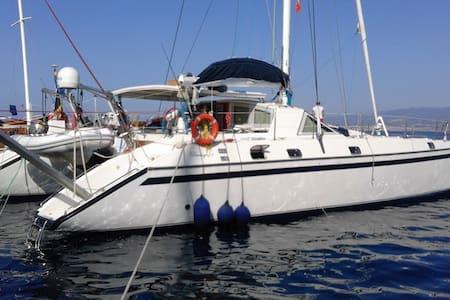Catamaran next to hydrofoils, perfect location - Milazzo