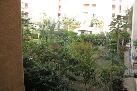 Furnished Apartment in Tosson- Alex