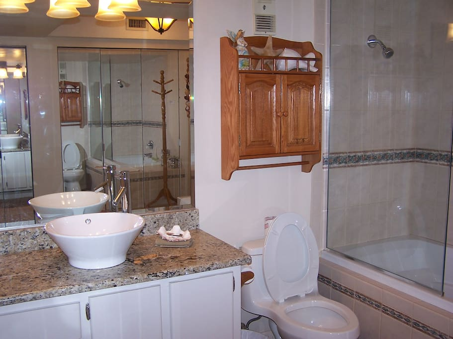 Master bathroom has granite counter, large area with mirrored closets and jacuzzi tub with shower