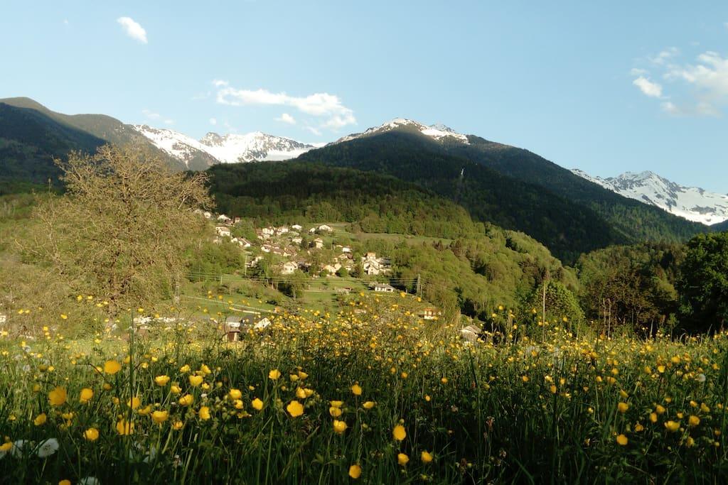 Vue au printemps