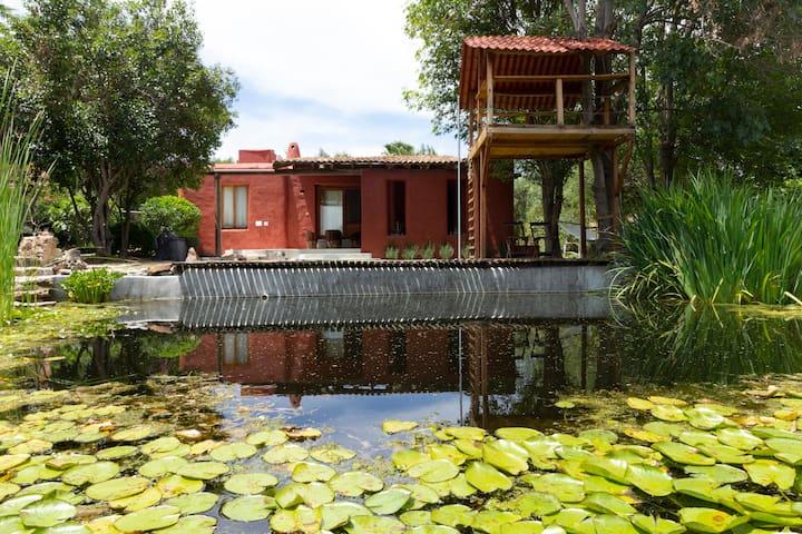 Casa ecologica con alberca natural