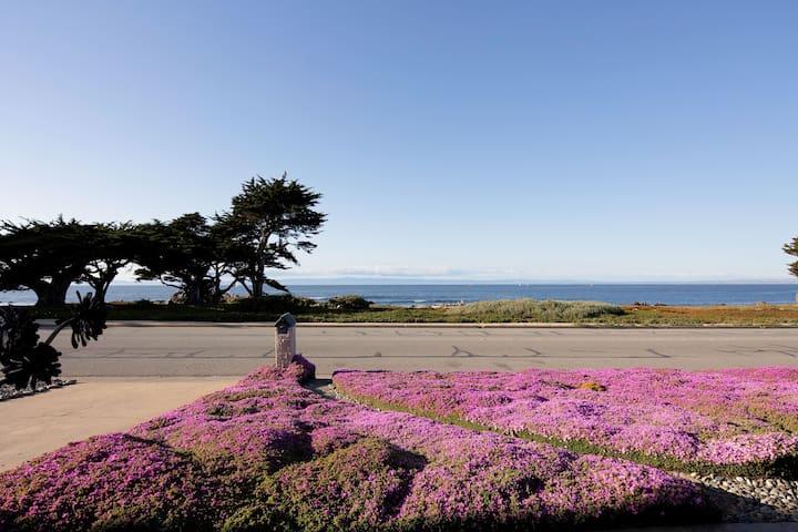 Ocean Front  on Ocean View Blvd