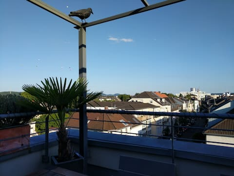 over the roofs of Bonn: nice room with bath