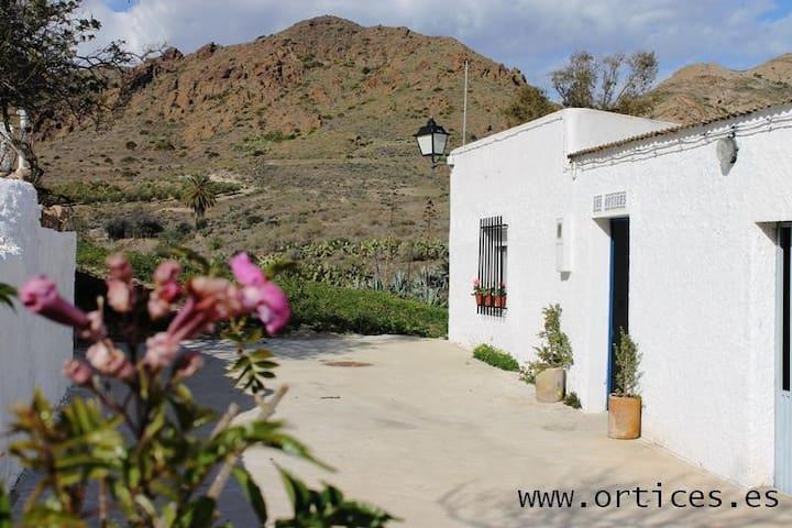 Casa en las Hortichuelas Bajas - Las Hortichuelas - Haus