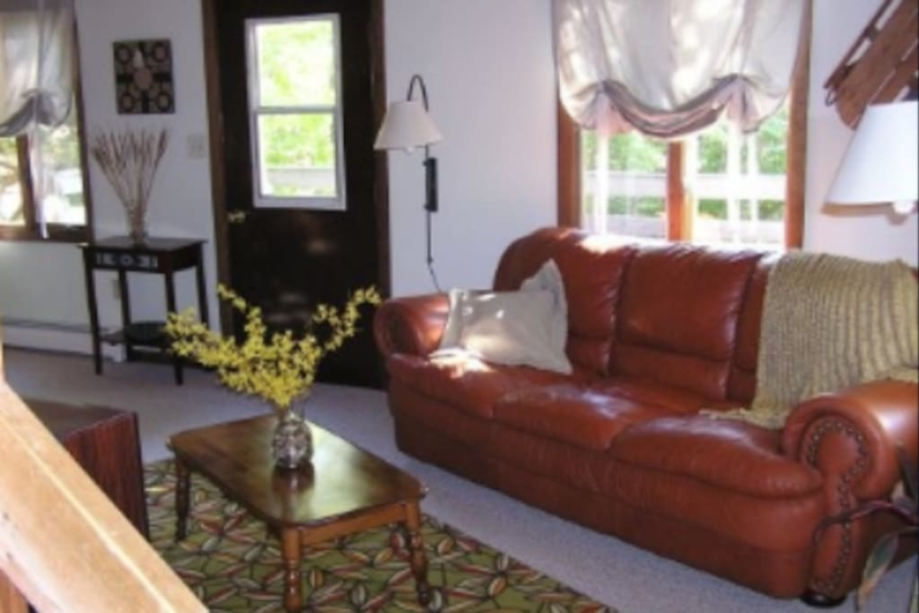 Full deck off the living area with overstuffed, rich leather furniture.