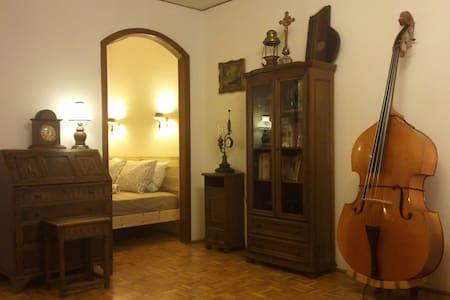 Central Apartment in Salzburg - Salzburg