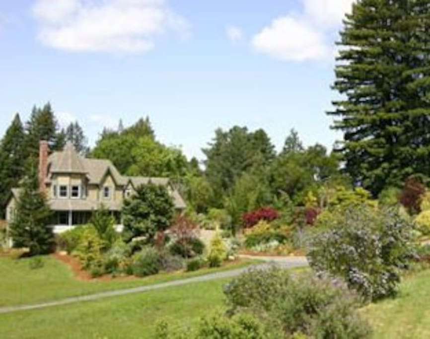 House is in country but one mile from downtown Sebastopol
