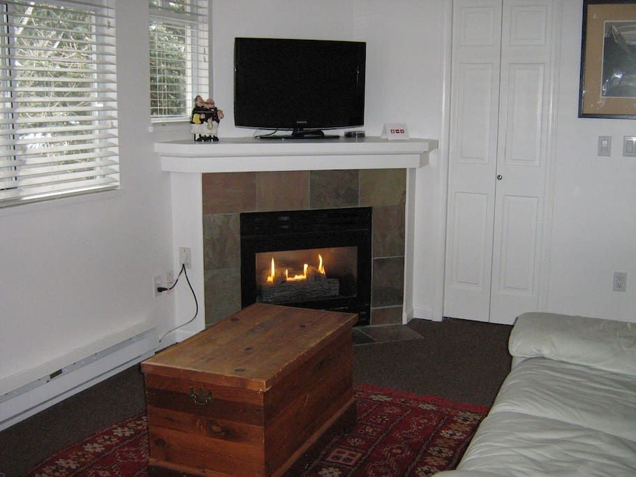 Fireplace and sofa bed