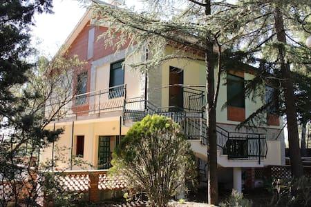La vostra casa sull'Etna a Pedara. - Pedara - Penzion (B&B)