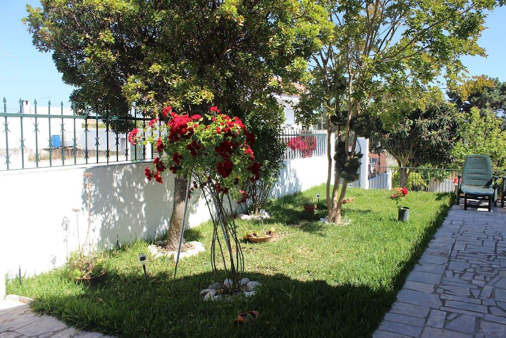 Entrada / Entry garden