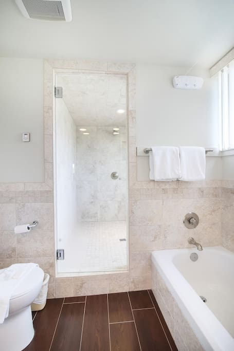 newly renovated bath with Steam shower